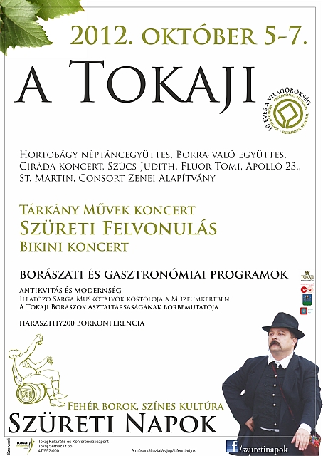 Tokaji szüret City Hungary