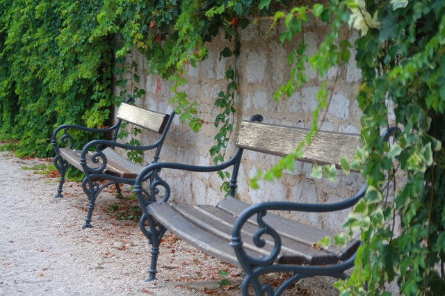 bench-252776_640