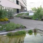 Bécsi megoldások a hőség ellen