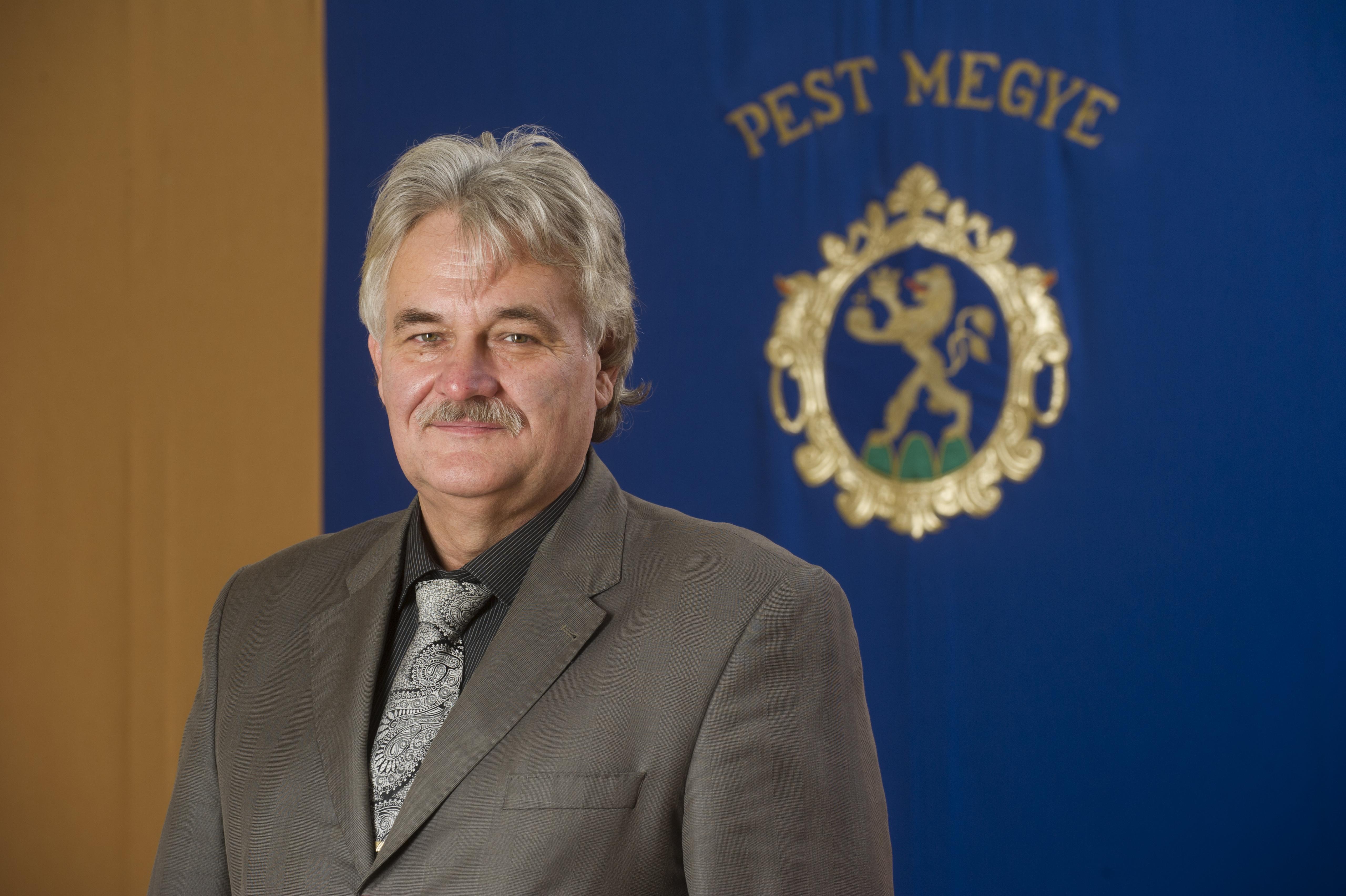 Szabó István, Pest Megye Önkormányzat elnöke