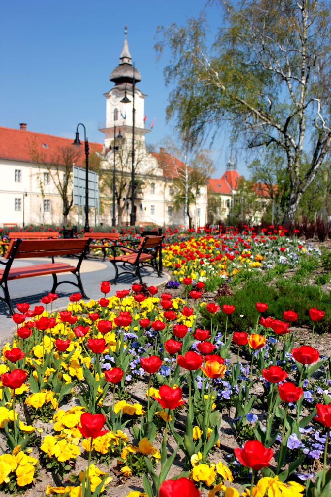 Ragyogó színek a városban
