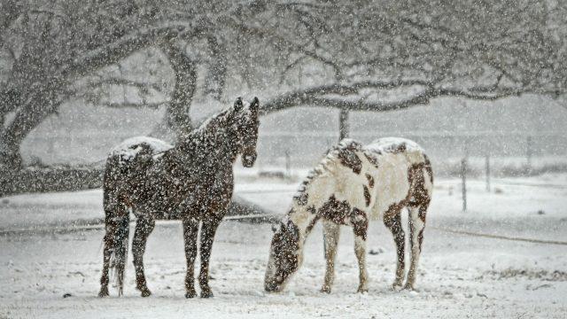 Kemény tél van Európában