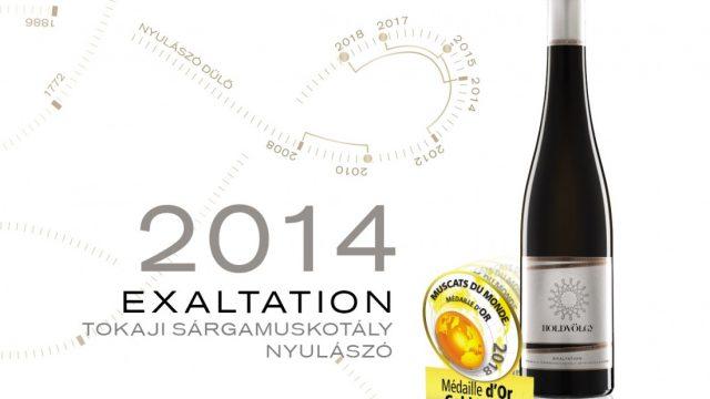 Holdvölgy a világ legjobb borai és pezsgői között