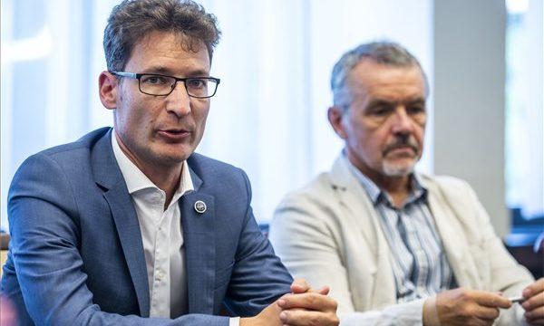 Napelemparkot létesít a Videoton Holding Székesfehérvárott
