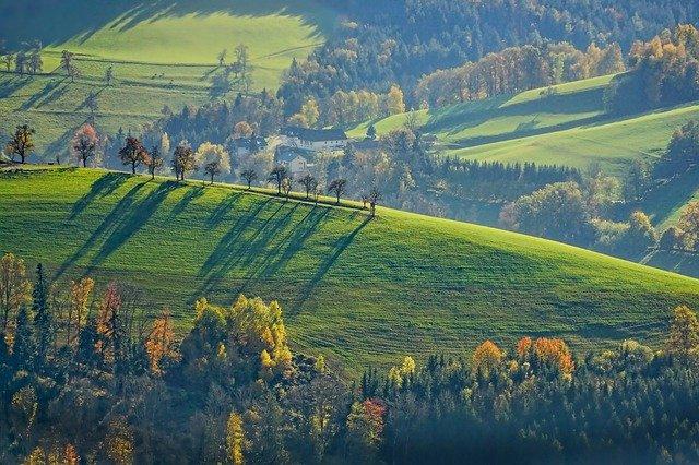 Magyar falu-porgarm