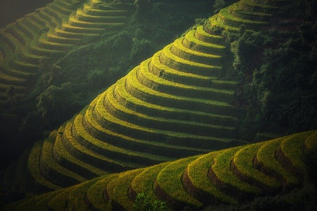 Kereskedelmi megállapodás az EU és Vietnám között